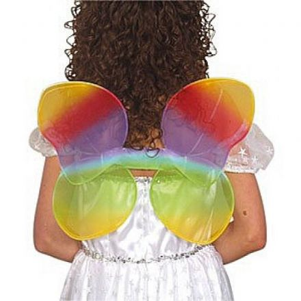 Rainbow Coloured Wings